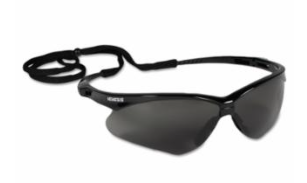 Nemesis Black w/Smoke Lens / Pair 1